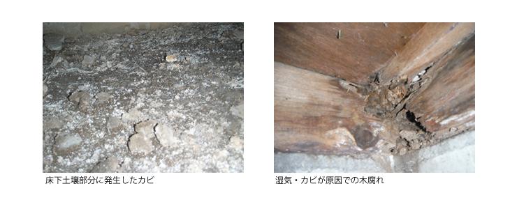 床下のカビ対策は白蟻施工と同時がお得