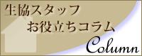 スタッフコラム