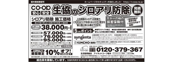 2017年3月朝日新聞シロアリ予防・駆除