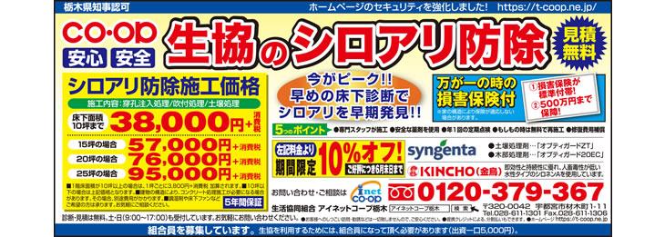 2017年6月とちぎ朝日新聞 シロアリ(白蟻)予防・駆除