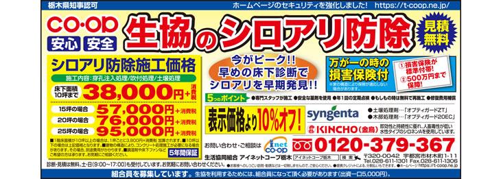 2017年8月とちぎ朝日新聞 シロアリ(白蟻)予防・駆除