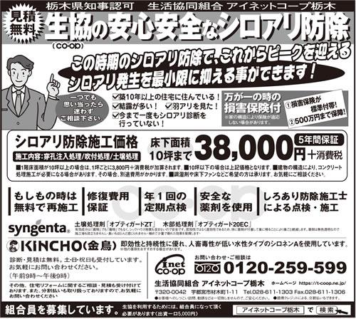 下野新聞 シロアリ駆除・予防|2019年3月